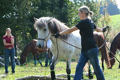 Körpertherapie für Reiter und Reiterinnen